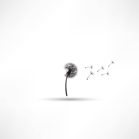 blowing of the wind: blowing dandelion vector