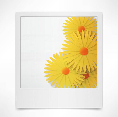 lily flowers collection: Photo frame Flower
