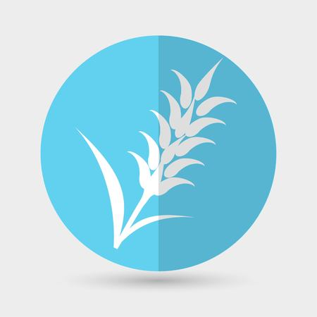 rye: Ears of Wheat, Barley or Rye icons