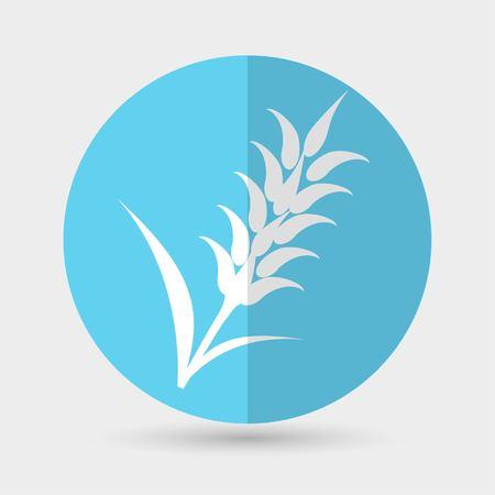 bran: Ears of Wheat, Barley or Rye icons