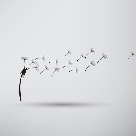 flimsy: blowing dandelion