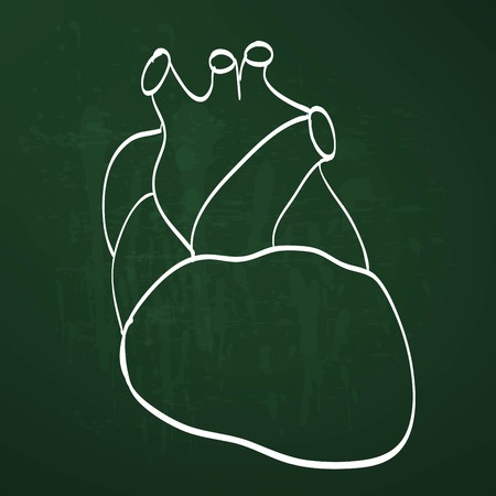 그린: heart anatomy on the chalkboard chalk painted 일러스트