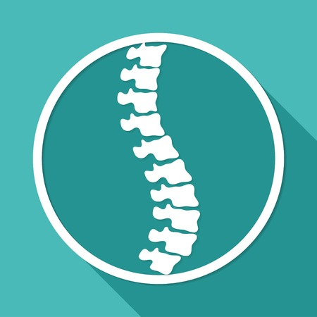 spine surgery: Icon Spine diagnostics on white circle with a long shadow Illustration