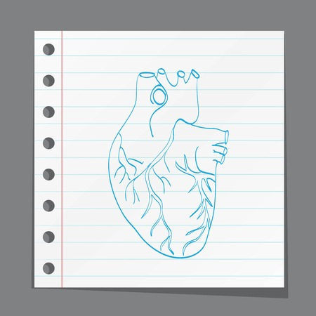 right ventricle: heart anatomy on paper Illustration