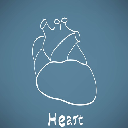 right ventricle: heart anatomy on the chalkboard chalk painted Illustration