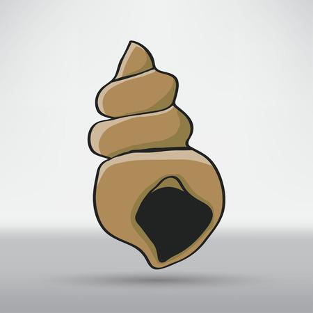 petoncle: Pétoncles coquillage
