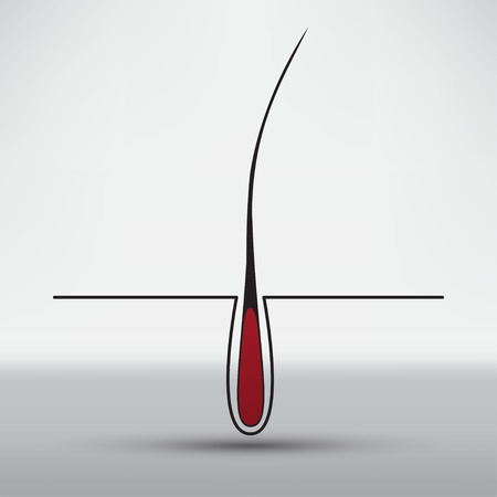 cuticle: hair follicle treatment design Illustration