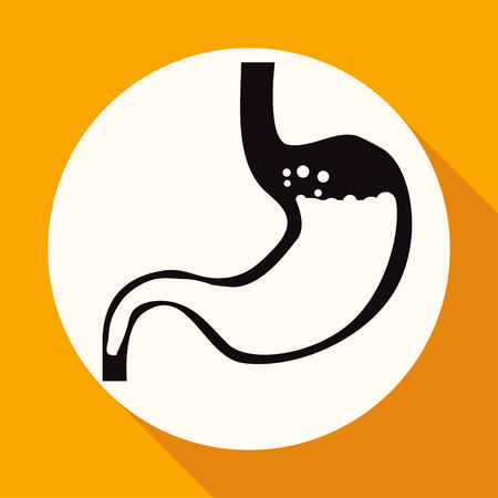 colonoscopy: Icon Human stomach on white circle with a long shadow Illustration