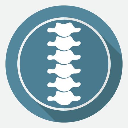 columna vertebral: Diagnóstico Icono Spine en círculo blanco con una larga sombra