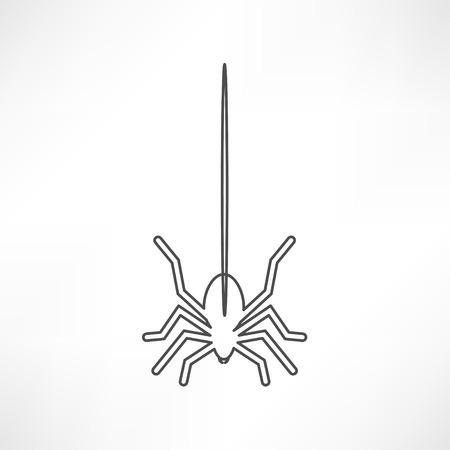 spidery: Spider icon Illustration