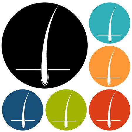 follicle: dise�o del tratamiento del fol�culo piloso