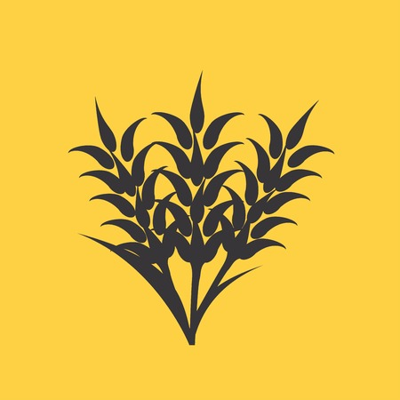 rye: Ears of Wheat, Barley or Rye visual graphic icons, ideal for bread packaging