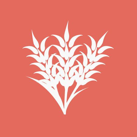 rye: Ears of Wheat, Barley or Rye visual graphic icon