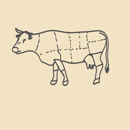 chuck: Cuts of beef vector illustration