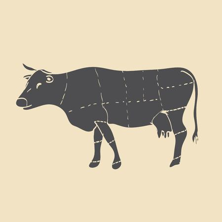 flank: Cuts of beef vector illustration
