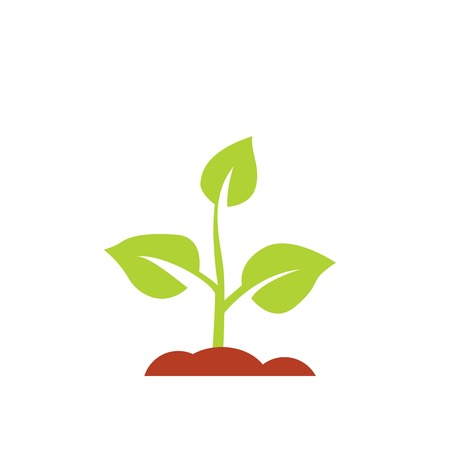 Seedling icon vector, growing tree, green agriculture.