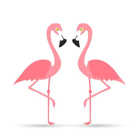 Pink flamingo on a white background, vector illustration.  イラスト・ベクター素材