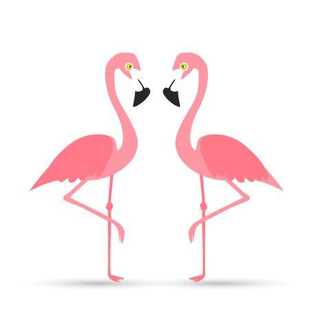 Pink flamingo on a white background, vector illustration. 일러스트