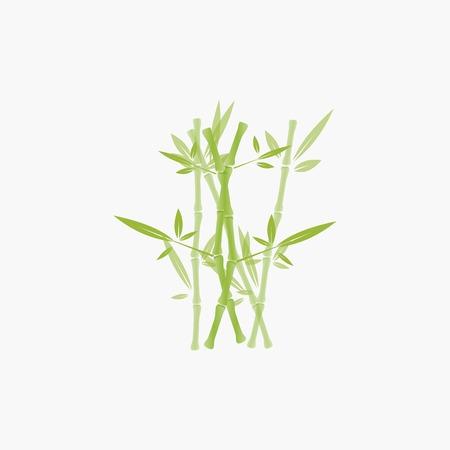 bamboo tree logo Illustration