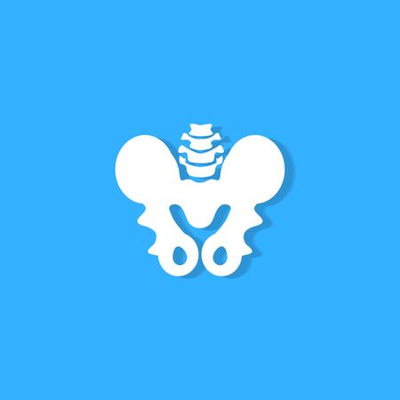 pelvic bone on blue background Stock Illustratie