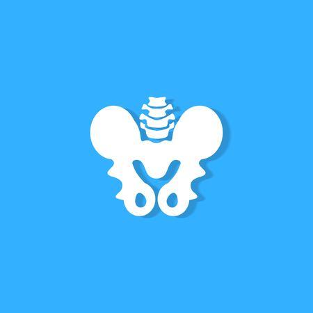 pelvic bone on blue background Illustration