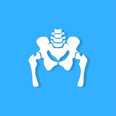 pelvic bone on blue background Illusztráció
