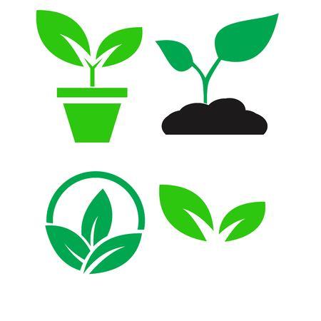 plante verte et laisser des icônes de couleur définir le vecteur Vecteurs