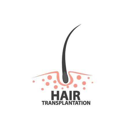illustrazione dei dettagli dei capelli Vettoriali