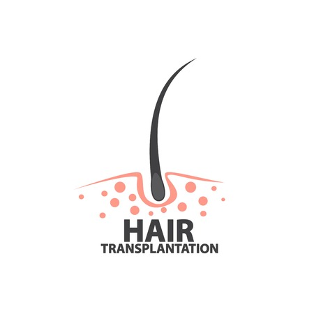 hair detail illustration