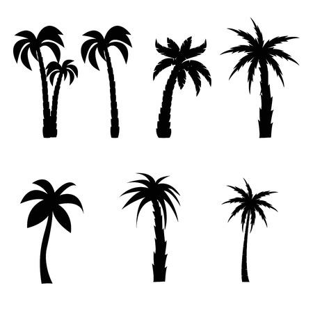 Conjunto de siluetas negras de palmeras Ilustración de vector