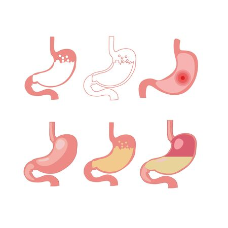 Stomach icon set, cartoon illustration 矢量图像