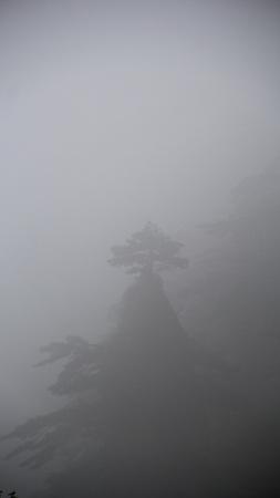 Huangshan in mist