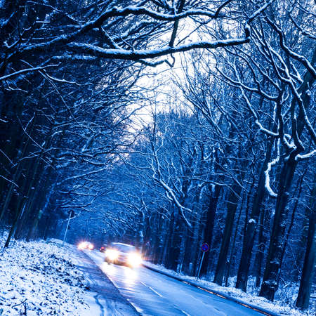cold weather: road in winter forest in evening