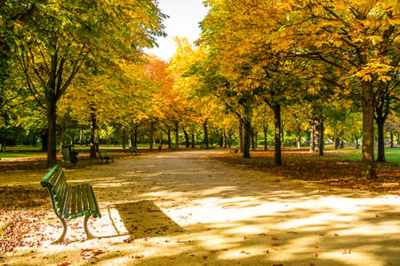bench in tiergarten berlin