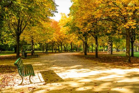 bench in tiergarten berlin
