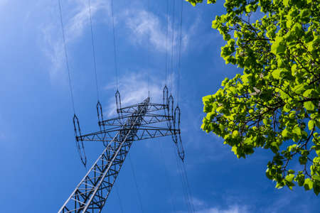 electricity providers: electrical tower, blue sky and green leaves in spring (eco power)