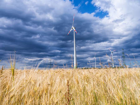 wind generators and a wheat field with storm clouds Stock Photo - 21056725