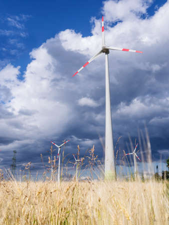 wind generators and a wheat field with storm clouds Stock Photo - 21056731