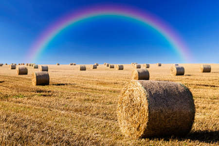 late summer: Straw bales on field in late summer and rainbow on blue sky