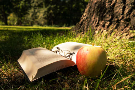 book, glasses, apple on forest ground