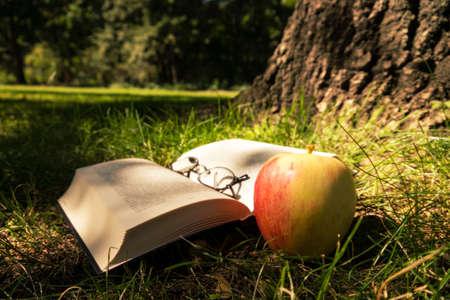 Buch, Gläser, Apfel auf Waldboden