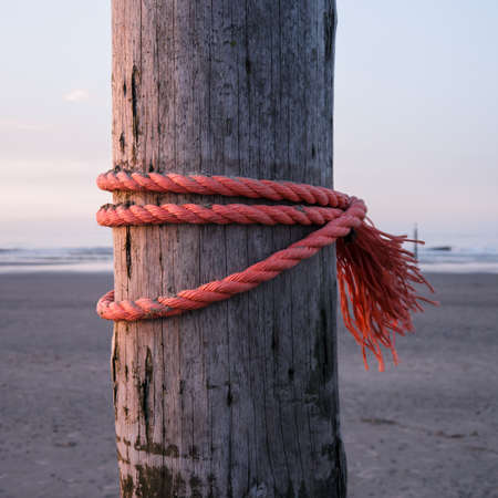 strong red rope on wooden stake