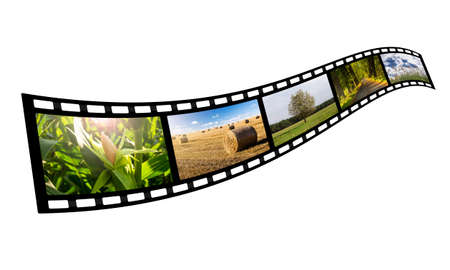 celluloid: film strip with summer images