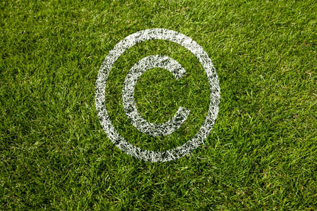 copyright symbol in white on meadow Standard-Bild