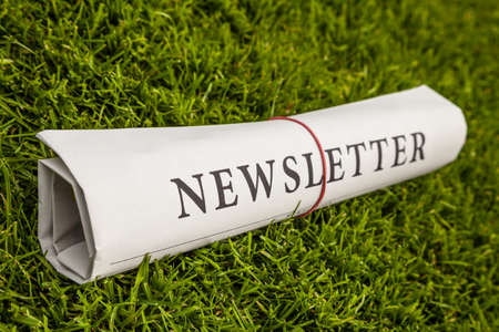 lates: newsletter newspaper on a green meadow Stock Photo