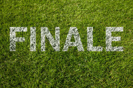 finale: final (finale in german) on meadow