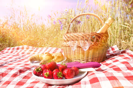 picnic on field in summer photo