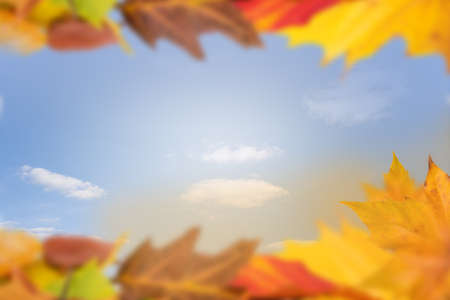 ��copy space �: Autumn background copy space