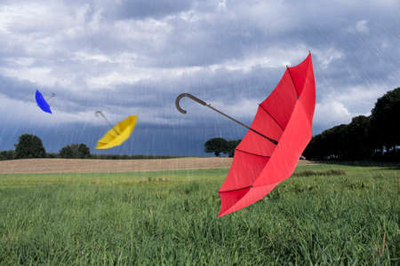 blustery: Umbrellas flying in rainy landscape Stock Photo
