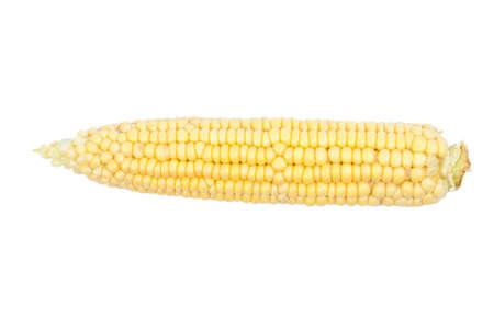 corncob: Corncob isolated